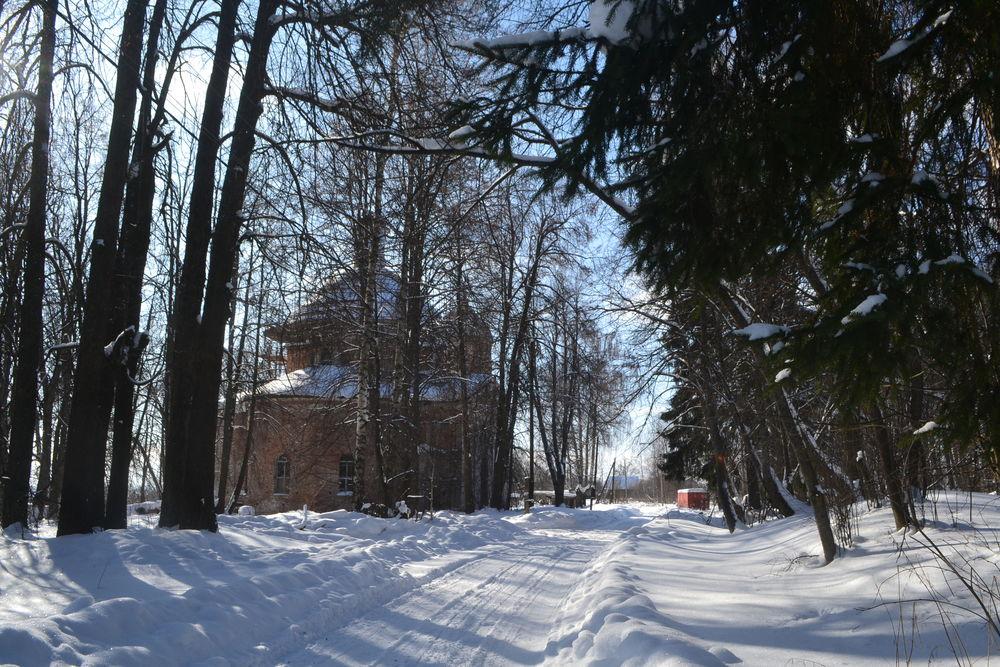 личный блог, снег, наталья гольденберг