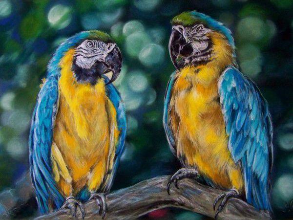 Скидка 30% на портреты цветов и животных! | Ярмарка Мастеров - ручная работа, handmade