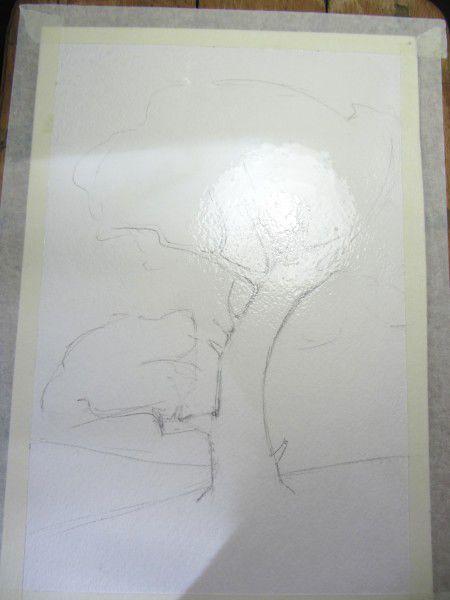 Как нарисовать дерево акварелью, фото № 4
