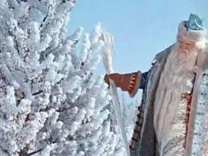 Мужик Убегал без Оглядки, Когда Встретил в Лесу Настоящего Деда Мороза. Ярмарка Мастеров - ручная работа, handmade.