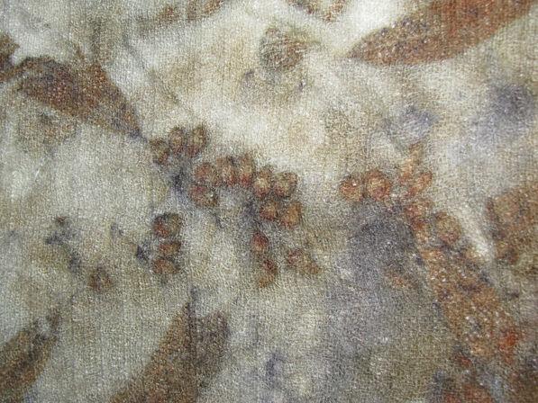 эко принт в одессе, окрашивание