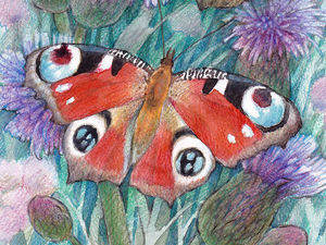 Реалистичное изображение бабочек в смешанной технике (акварель и цветные карандаши). Ярмарка Мастеров - ручная работа, handmade.
