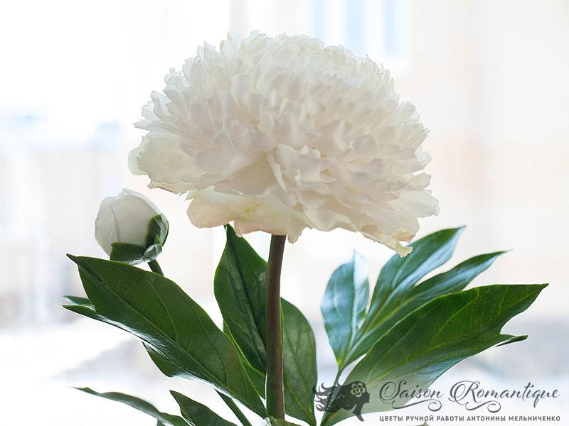 лепка цветов, пион