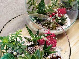 Новый флорариум  «Новогодний». Ярмарка Мастеров - ручная работа, handmade.