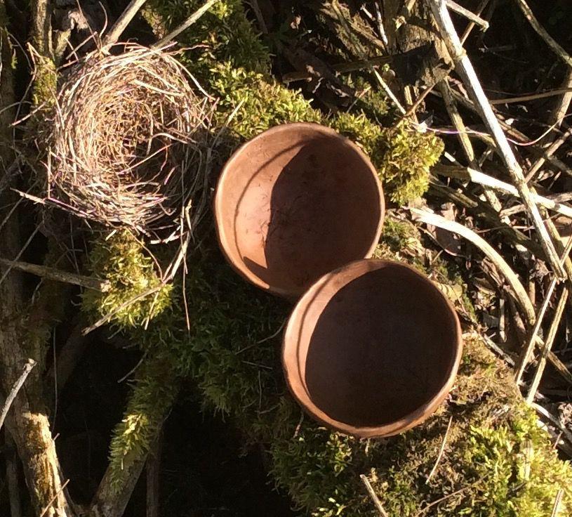 Две скорлупки времени.. Две чайные пиалы, фото № 9