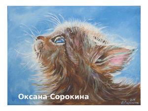 Картина маслом Котенок на солнышке. Ярмарка Мастеров - ручная работа, handmade.