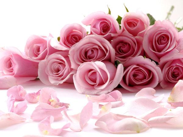 Акция для любителей роз)   Ярмарка Мастеров - ручная работа, handmade