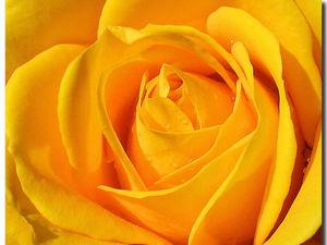 Психология желтого цвета   Ярмарка Мастеров - ручная работа, handmade