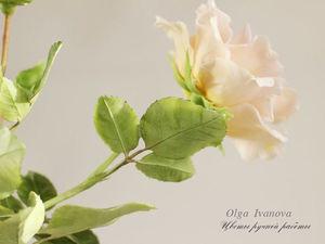 Крымская парковая роза.. Ярмарка Мастеров - ручная работа, handmade.