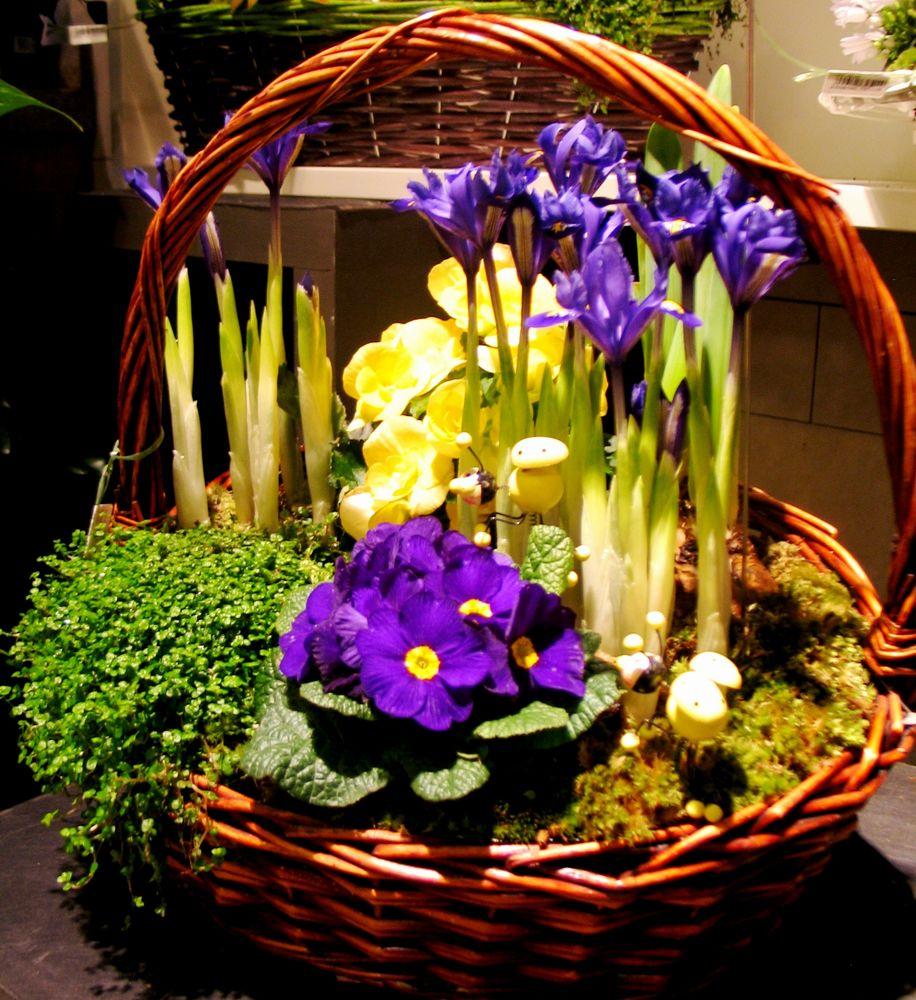 весна, тюльпан, букет цветов