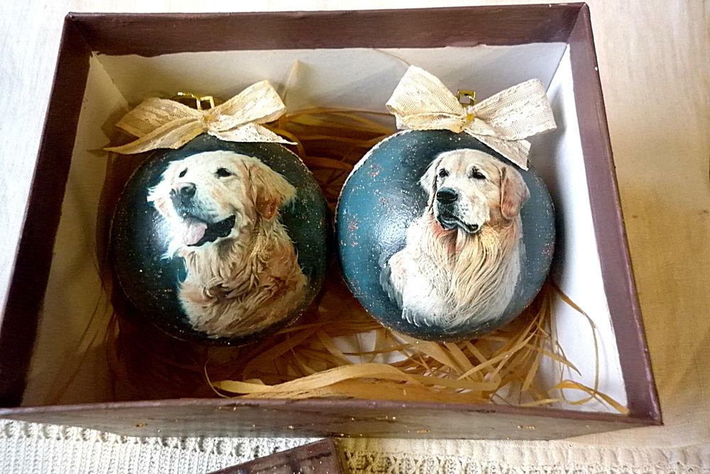 собака, шары в коробке