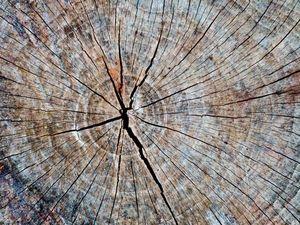 Деревянное платье мое. Ярмарка Мастеров - ручная работа, handmade.