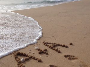 Море - коллега-валяльщик | Ярмарка Мастеров - ручная работа, handmade