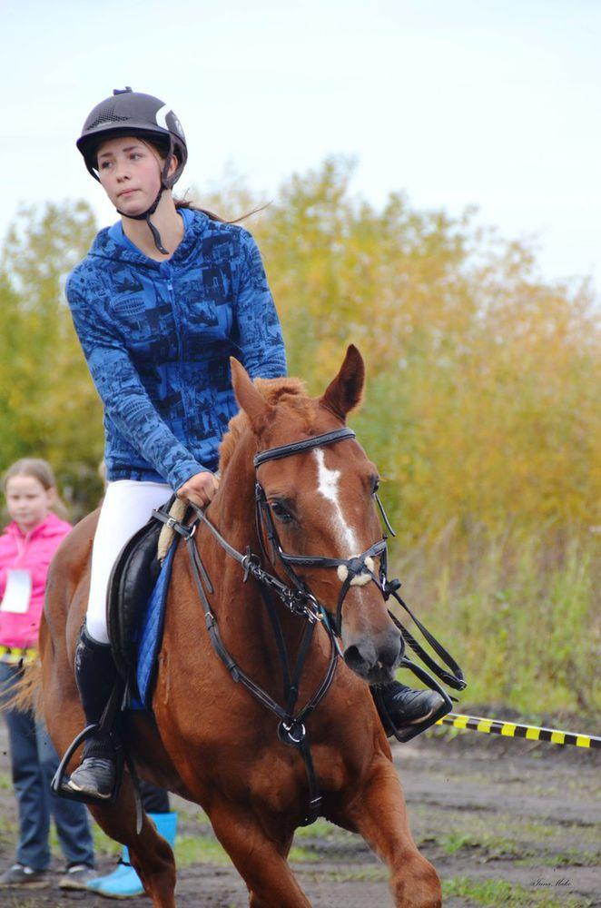 конный спорт