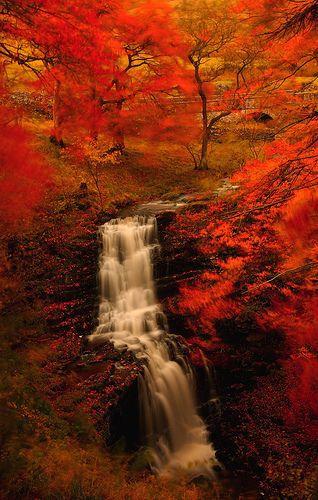 waterfall...gorgeous