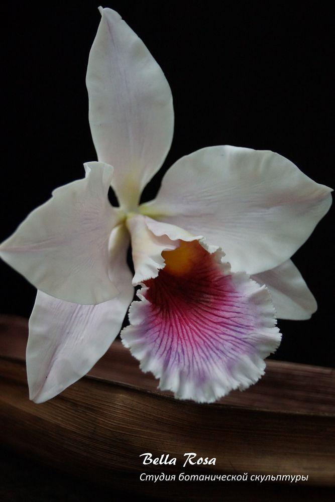 орхидеи, цветы из полимерной глины