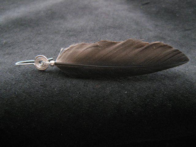 corvus corax, новость магазина