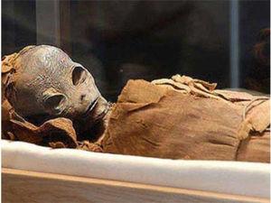 В секретном отделе пирамиды найдены мумия инопланетянина | Ярмарка Мастеров - ручная работа, handmade