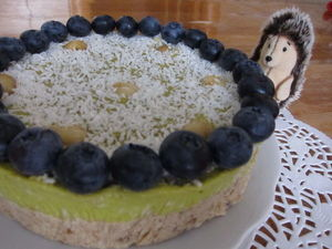 Raw-торт без орехов. вы еще не пробовали?. Ярмарка Мастеров - ручная работа, handmade.