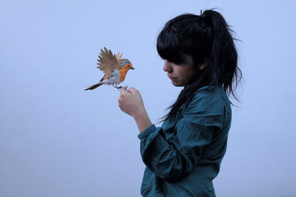 фотосессия с бумажными птицами начинают созревать концу