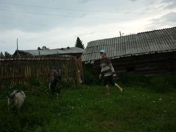 жизнь в деревне | Ярмарка Мастеров - ручная работа, handmade