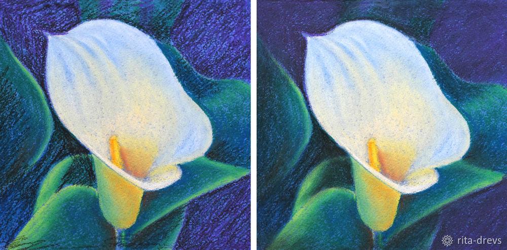 Рисуем пастелью изящный цветок каллы, фото № 11