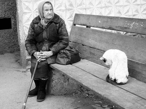 Когда Мама Стала Старенькой | Ярмарка Мастеров - ручная работа, handmade