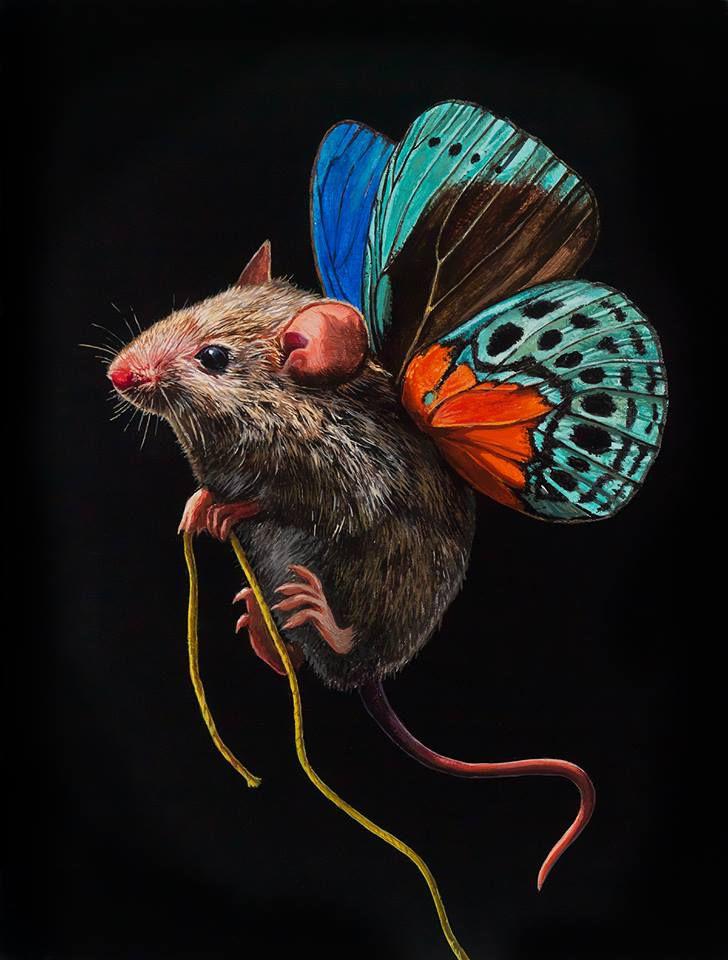 мыши-бабочки