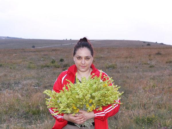 Начинаю цикл публикаций о моих путешествиях за травами.   Ярмарка Мастеров - ручная работа, handmade