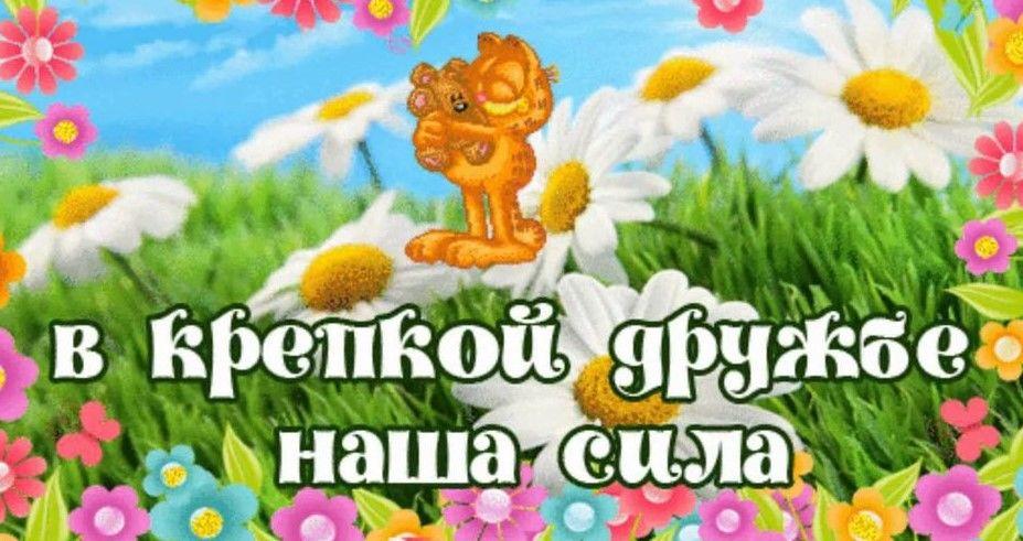 друзья, дружба, счастье, мир, свет, позитив, праздники, мир в дом, счастливый день, друзьям