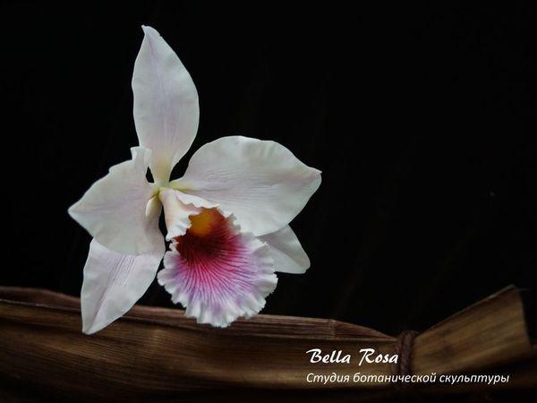 Орхидея Каттлея.  Результат сегодняшнего индивидуального урока. | Ярмарка Мастеров - ручная работа, handmade