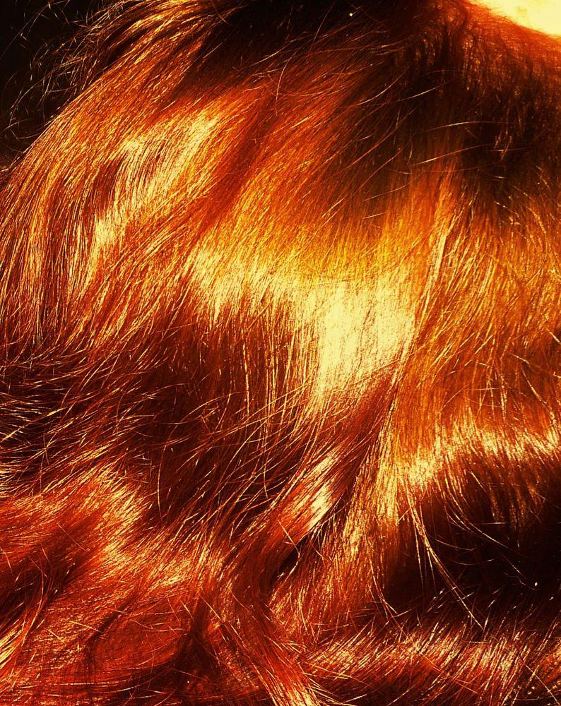 для роста волос, хна для волос