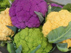 Вкуснятина из цветной капусты. | Ярмарка Мастеров - ручная работа, handmade