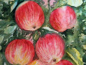 Видео мастер-класс: пишем акварелью сочные яблочки. Ярмарка Мастеров - ручная работа, handmade.