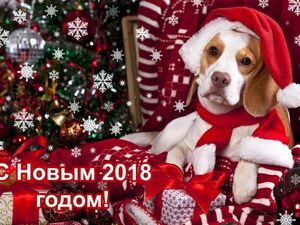 Новый Год к нам Мчится со Скидками !!!!!!!!. Ярмарка Мастеров - ручная работа, handmade.
