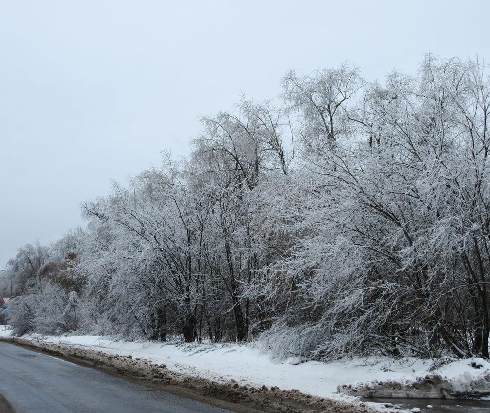 ледяной ноябрь