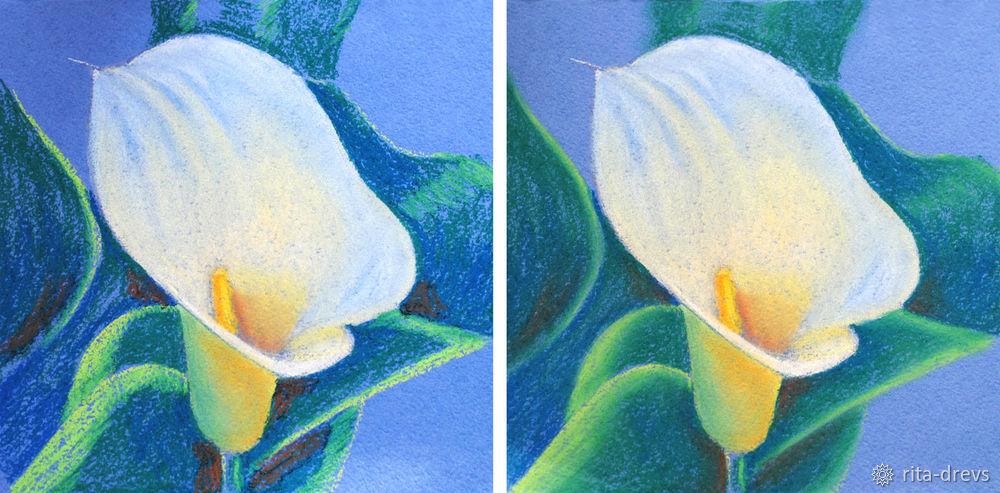 Рисуем пастелью изящный цветок каллы, фото № 10
