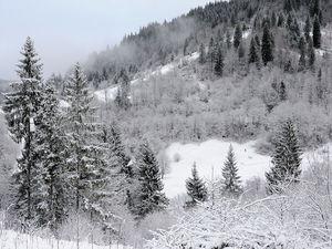 Зимний поход. | Ярмарка Мастеров - ручная работа, handmade