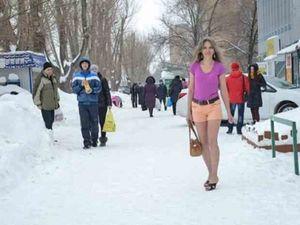 Мерзнут ли наши граждане зимой. Ярмарка Мастеров - ручная работа, handmade.