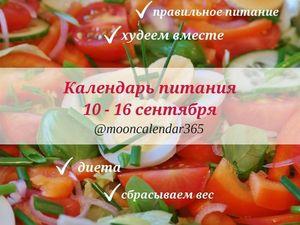 Календарь питания (10 — 16 сентября). Ярмарка Мастеров - ручная работа, handmade.