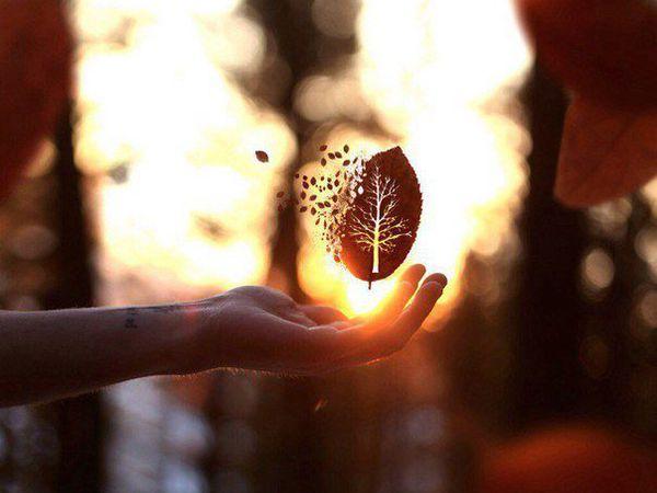 Только Я и Осень... | Ярмарка Мастеров - ручная работа, handmade