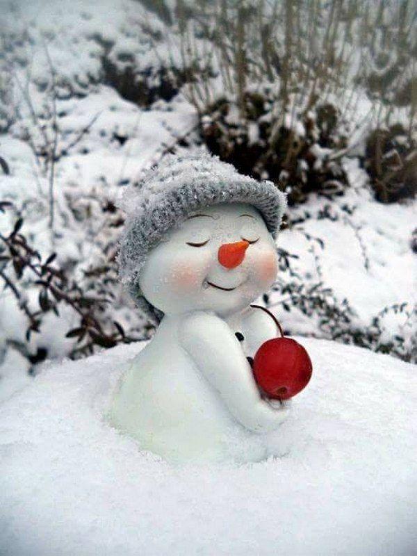 Волчицами, картинки прикольные про снег с добрым утром