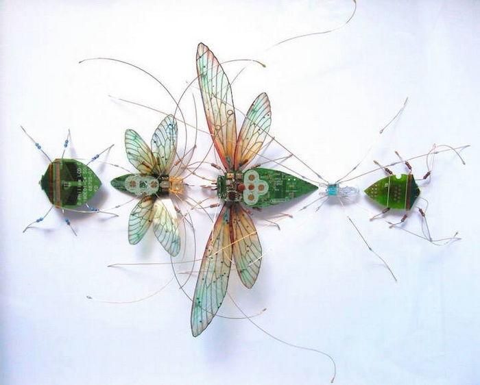 Необычные насекомые Julie Alice Chappell
