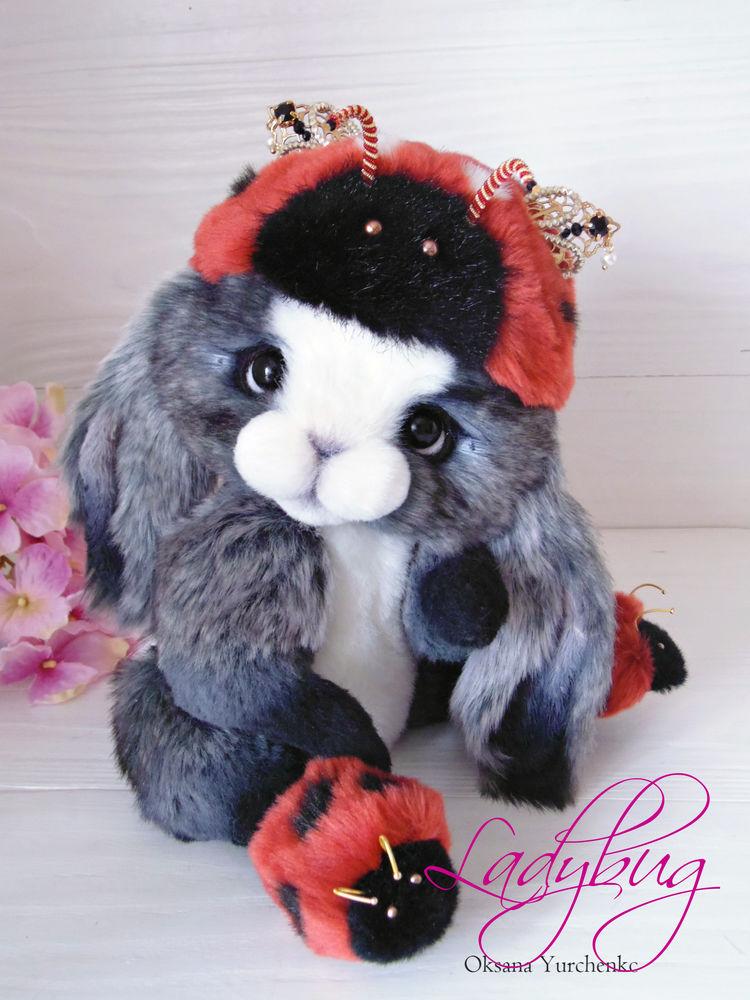 кролик тедди, фотосессия