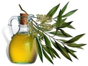 Можно ли пить оливковое масло на ночь?. Ярмарка Мастеров - ручная работа, handmade.
