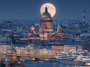 Срочно! Срочно! Срочно! Бесплатная доставка в Санкт-Петербург! | Ярмарка Мастеров - ручная работа, handmade