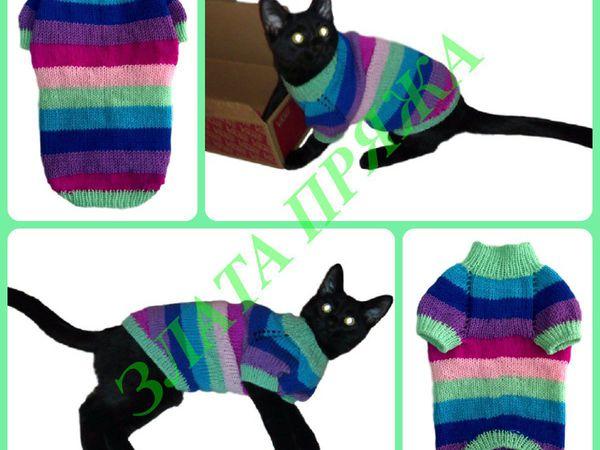 Раз полоска, два полоска свитерок коту готов | Ярмарка Мастеров - ручная работа, handmade