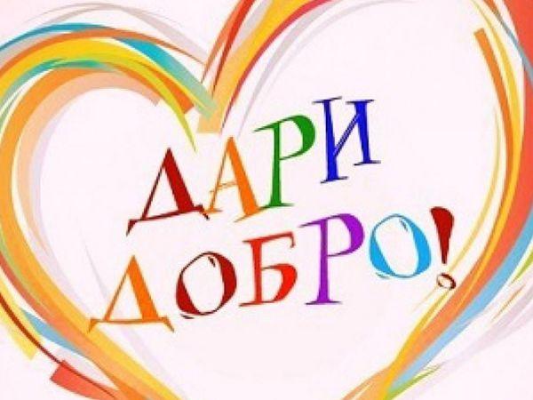 Прием работ на 4-й аукцион для Глебушки Савинова!   Ярмарка Мастеров - ручная работа, handmade