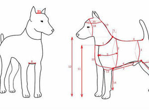 Как правильно снимать мерки для собак и кошек. Ярмарка Мастеров - ручная работа, handmade.