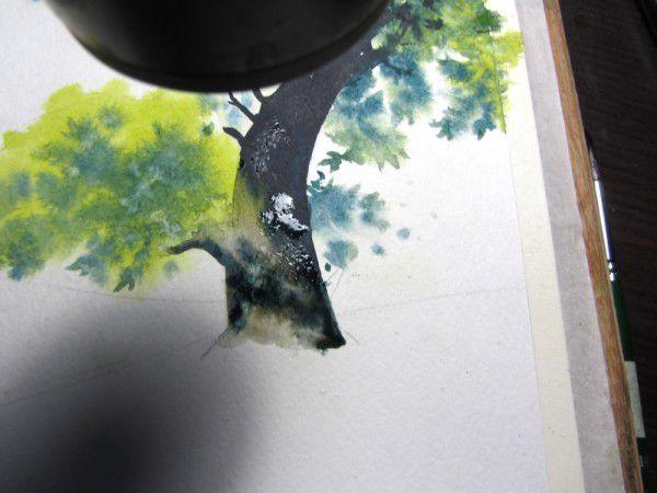 Как нарисовать дерево акварелью, фото № 16